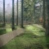 mvva_landscape_view_ir_fina